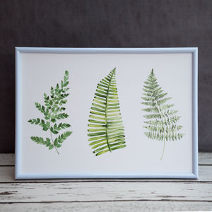 Watercolour Botanical Fern Print
