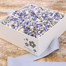 Biodegradable Wedding Petal Confetti Box