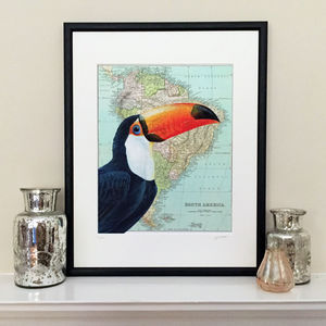 Toucan Bird On South America Map Limited Edition Print - limited edition art