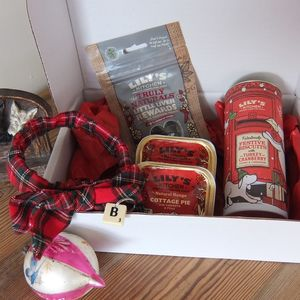 Treat And Bow Tie Gift Box For Dogs - dogs