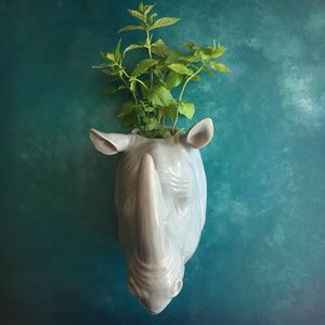 Rhino Wall Planter - table decoration