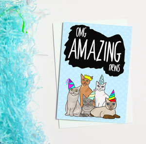 Congratulations Card Cats In Party Hats - what's new