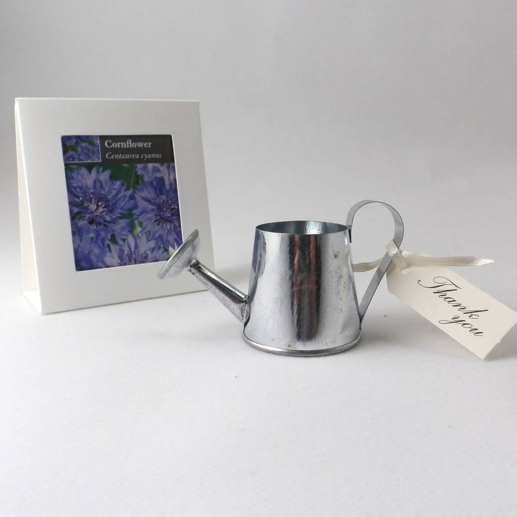 flower seeds and watering can wedding favours by bunting & barrow ...
