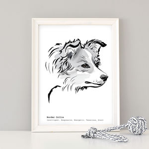 Personalised Border Collie Print, Black/Brown/Tricolour - prints & art sale