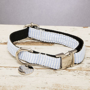 The Putney Blue Striped Dog Collar - dog collars