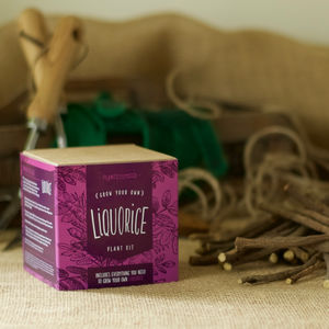 Grow Your Own Sweet Liquorice Plant Kit - 50th birthday gifts