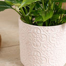 Pastel Mosaic Patterned Plant Pot Collection