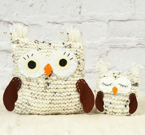 Woolly Owls 'Learn To Knit' Kit - sewing & knitting