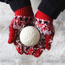 Lifesize Chocolate Snowball
