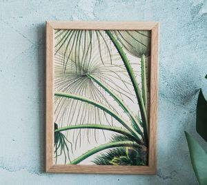 Abstract Palm Framed A5 Print - nature & landscape