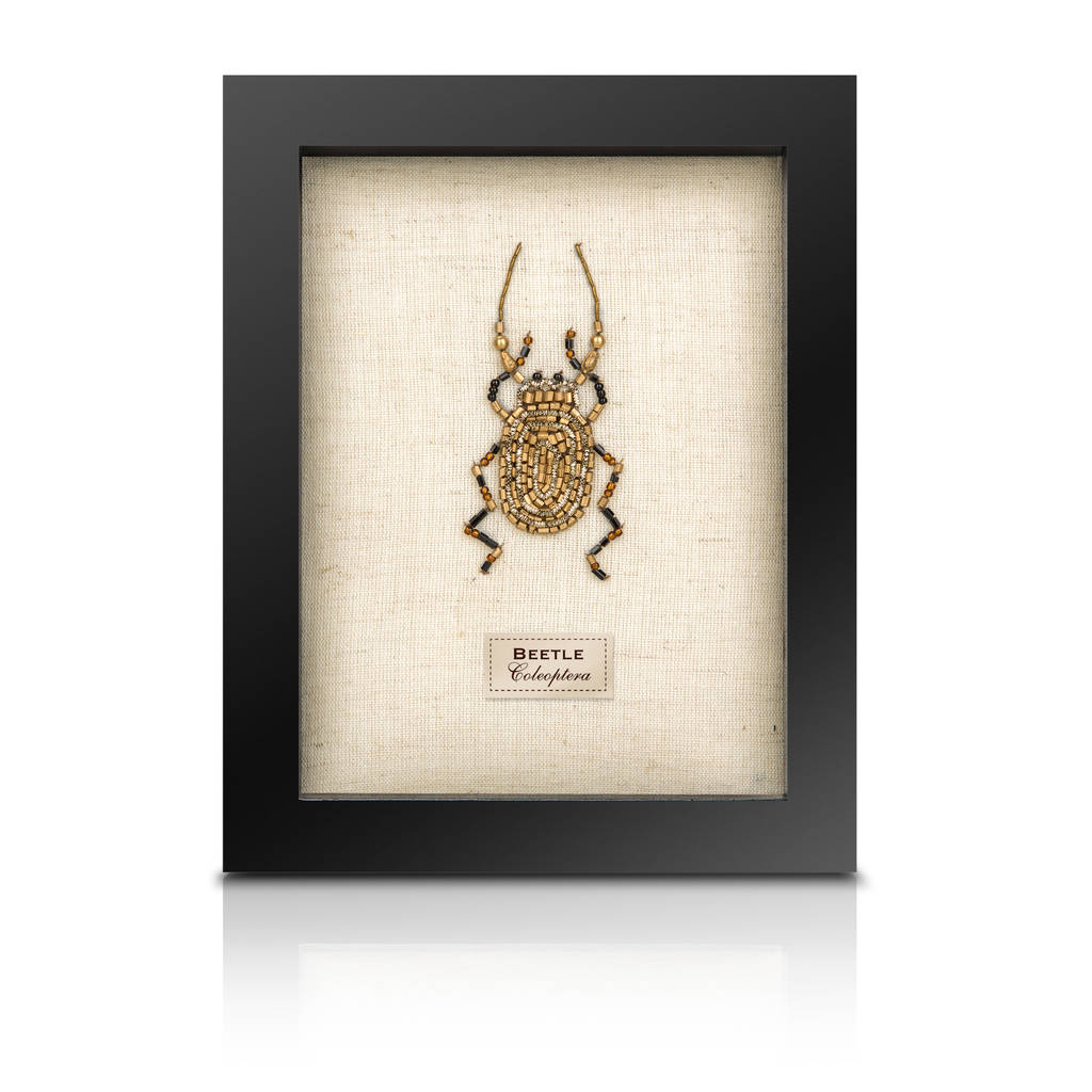 The Bullion Beetle Collection *Stag Beetle