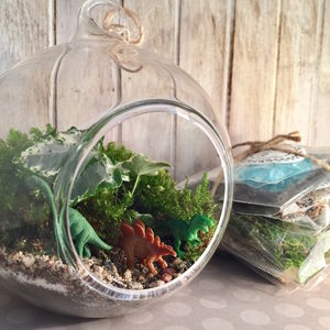 Jurassic Diy Terrarium Kit - terrariums