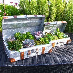 Set Of Two Galvanised Steel Suitcase Planters - pots & planters