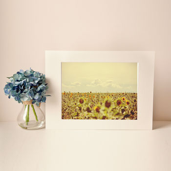 Sunflower Provence Yellow Fine Art Photographic Print
