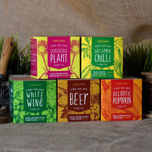 Four Grow Your Own Plant Kits