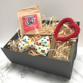 Gift Box For A Dog You Love