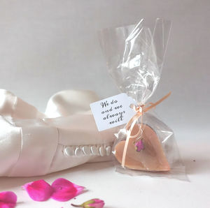 Pack Of 25 Clear Favour Bags, Tags And Ribbon - styling your day sale