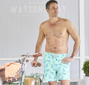 Men's Blue Or Jade Green Pineapples Swimming Trunks