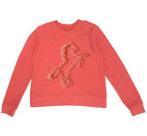 Cotton Embroidered Three Horse Sweat Shirt