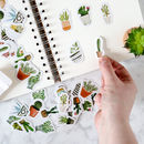Cactus And Succulent Sticker Pack