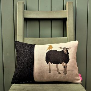 Black Sheep And Golden Bird Cushion - cushions