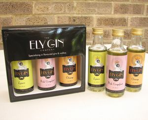 Ely Gin Taster Gift Box - gifts to drink