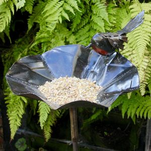 Robin Birdfeeder - birds & wildlife