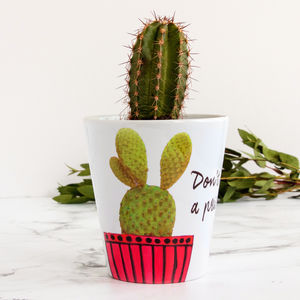 Personalised Cactus Plant Pot