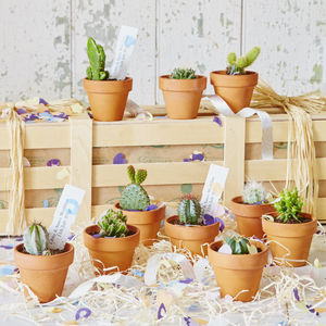 Personalised Cactus Wedding Favours