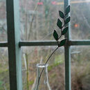 Rye Grass Stained Glass Wildflower