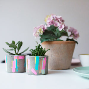 Bon Concrete Pot With Succulent Plant - secret santa gifts