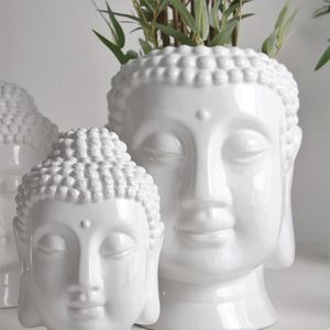 Buddha Plant Pot - our sale top picks