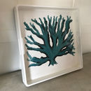 Handpainted Sea Fan Design On Large White Laquer Tray