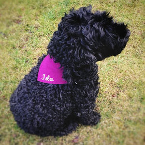 Harris Tweed Dog Bandana - new in pets