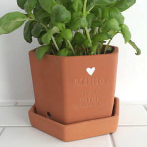 Personalised Friendship Hexagonal Pot - pots & planters