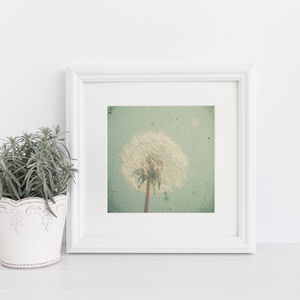 Dandelion Clock Photographic Print - posters & prints