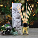 Wild Fig Large Reed Diffuser