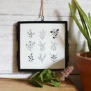 Illustrated Plants Framed Artwork