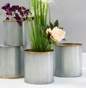 Gold Edged Plant Pots - new in garden