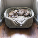 Charley Chau Raised Oval Rattan Pet Bed