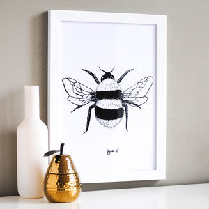 Bumble Bee Illustration Print