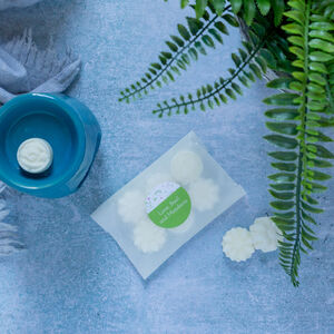 Twelve Lime, Basil And Mandarin Soy Wax Melts