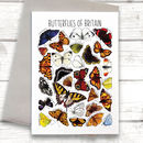 Butterflies Of Britain Art Blank Greeting Card