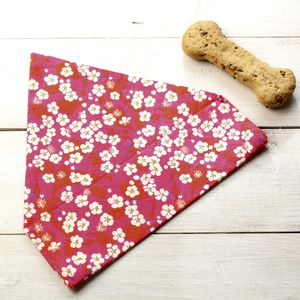 Sasha Liberty Fabric Dog Bandana