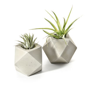 Concrete Cuboctahedron Air Plant Holder - kitchen