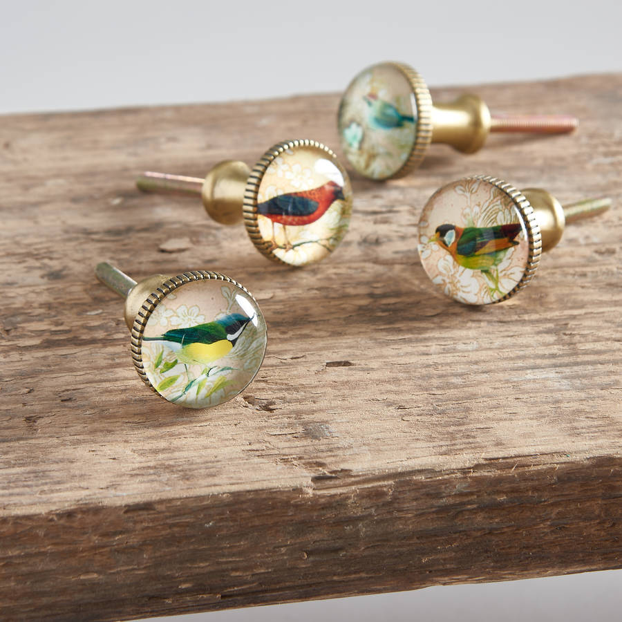 Set Of Four Glass And Brass Bird Knobs