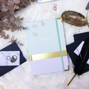 2017 'Ceo Of My Own Life™' Planner Lavender And Mint - diaries sale