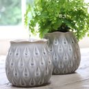 Grey Ceramic Plant Pot