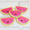 Cute Watermelon Embroidered Sew On Patch