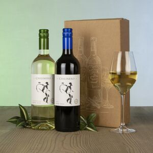 New World Wine Duo Set